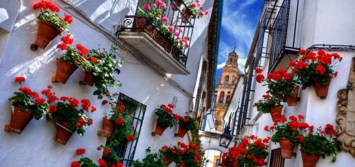 Битва цветов в Испании