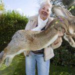 10 аномально больших животных мира