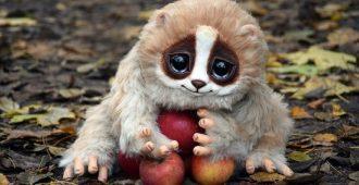 Топ 10 самых милых животных