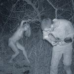 Топ-15 фотографий явлений призраков - Секреты вдохновения
