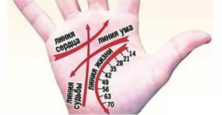 что значит линия ума на руке