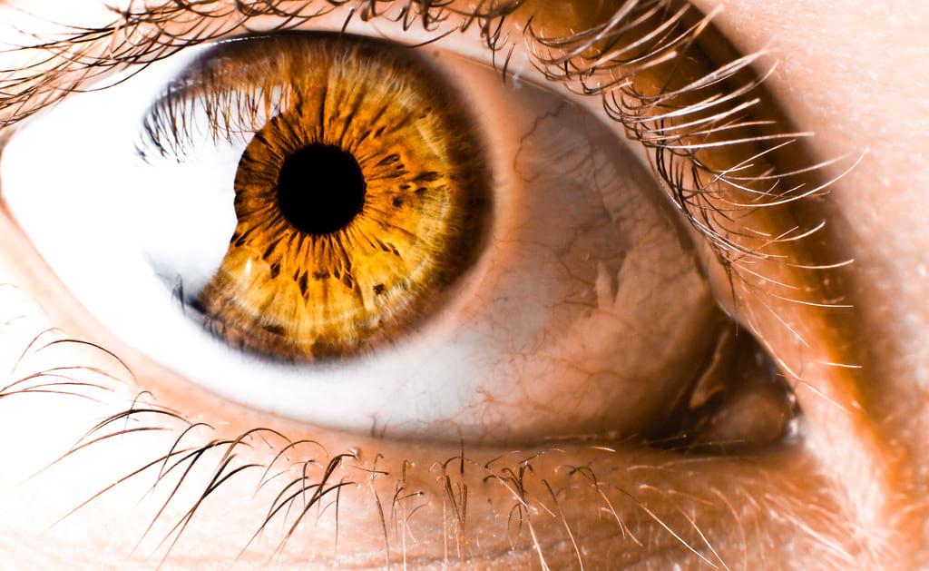 Как определить характер по цвету и форме глаз