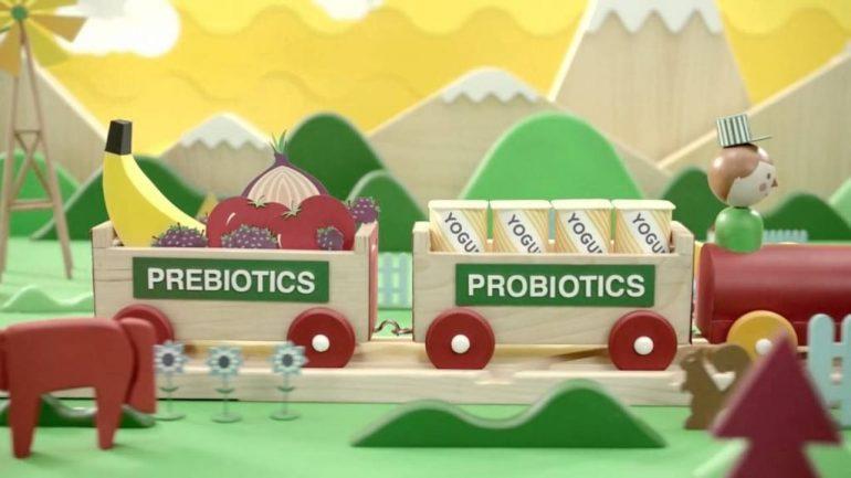 Пробиотики и пребиотики - что это такое?