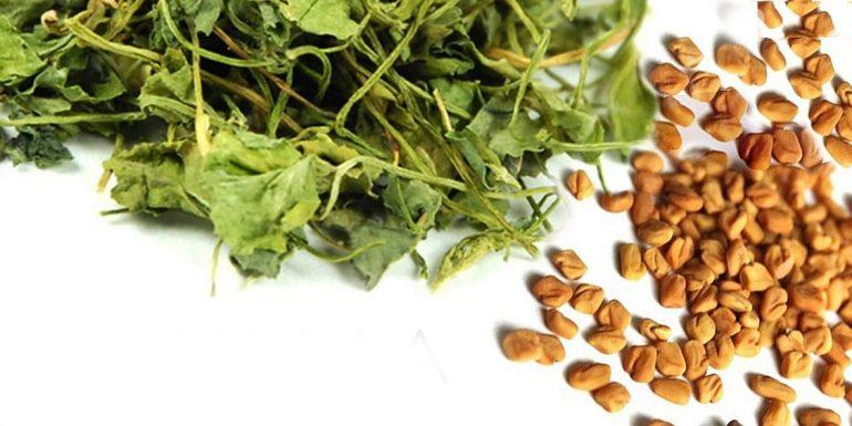 Семена пажитника для укрепления иммунитета