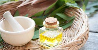 wsi imageoptim Eucalyptus oil e