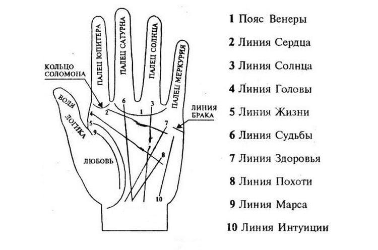 Что означает линия судьбы на руке