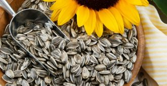 wsi imageoptim hipwee sunflower seeds