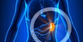 Увеличение селезенки: симптомы и лечение