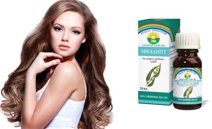 Масло эвкалипта улучшает состояние волос