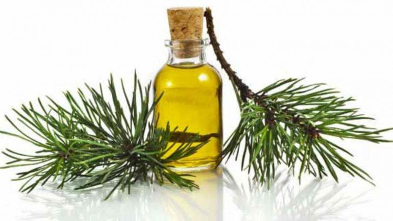 Пихтовое масло не рекомендовано принимать при беременности