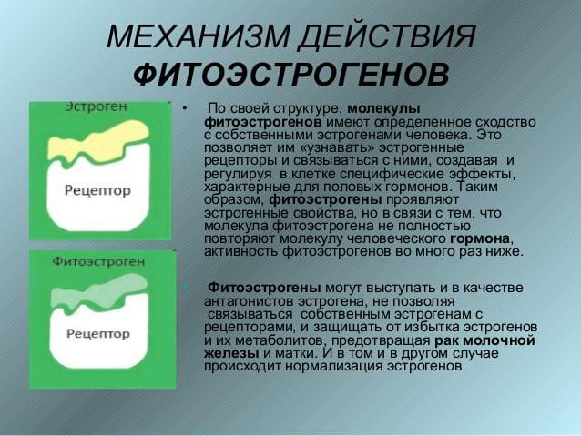 Климактерический синдром стадии особенности