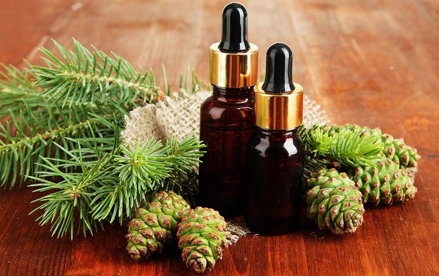 Применение пихтового масла: полезные свойства и противопоказания