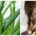 как использовать алоэ для волос