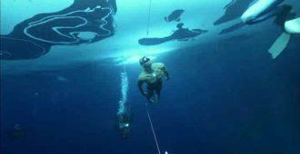 wsi imageoptim swim