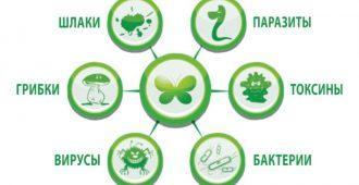 Причины очищения организма
