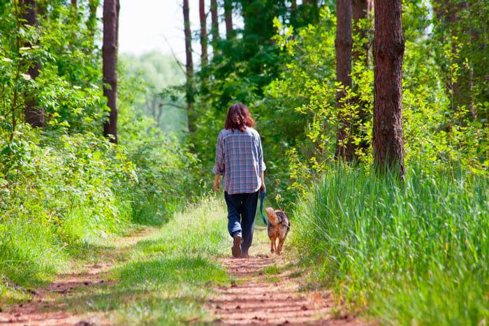 как в 50 лет выглядеть на 35 - Прогулка в лесу